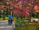 秋は縮景園の見ごろ