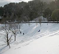 積雪時のソリ遊び