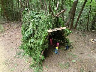 森の隠れ家づくり